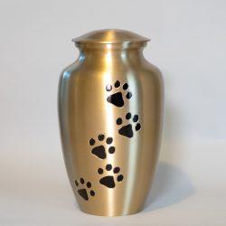 brass-paw-large