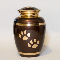 brown-paw-large