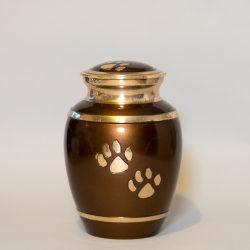brown-paw-medium